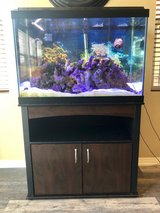 65 Gal Saltwater Aquarium Complete w/ Fish in Temecula, California