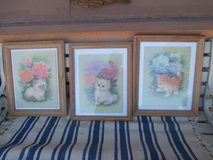 Three Pictures of Cats in 29 Palms, California