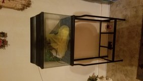 Fish aquarium with stand with some accessories in Leesville, Louisiana