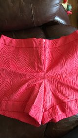 size 14 NWT midrise, textured, shorts in Sugar Grove, Illinois