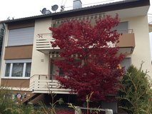 Beautiful apartment in downtown Sindelfingenfrom end of September. in Stuttgart, GE
