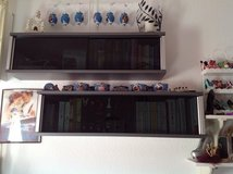 2 grey / silver cabinets for books, DVDs, CDs in Ramstein, Germany