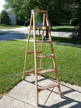 6 Foot ladder in Westmont, Illinois