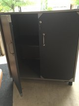 Storage cabinet for garage in Oswego, Illinois