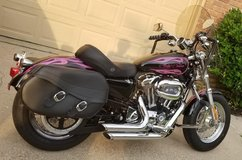 2013 Sportster XL 1200CP in Spring, Texas