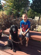 Donations for service dog in St. Charles, Illinois