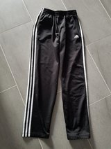 Adidas Training Pants in Stuttgart, GE