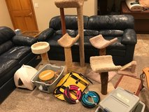 Miscellaneous Cat/ Kitten Toys, Towers, Supplies in Westmont, Illinois