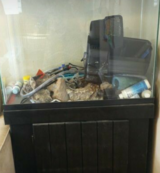 Aquarium with Cabinet Stand & Accessories in Tacoma, Washington