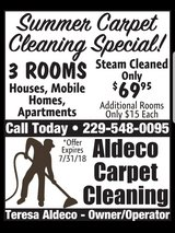 PROFESSIONAL CARPET CLEANING in Moody AFB, Georgia