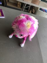 Reduced: Hedgehog Toy in Joliet, Illinois