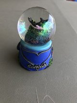 Sea World Killer Whale/Orca Snowglobe in Chicago, Illinois