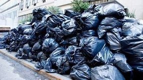 TRASH HAULING & JUNK REMOVAL / PCS  CLEANING/ PICK UP & DELIVERY / YARD & GARDRN  /MOVING  / PAI... in Ramstein, Germany
