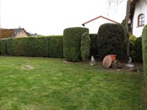 PCS CLEANING/TRASH hauling/TRASH REMOVAL/LANDSCAPING/MOVING YARD WORK/pick UP AND DELIVERY SERVI... in Lakenheath, UK