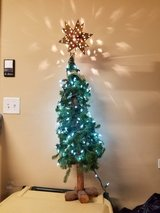 Christmas Tree with Lights in Naperville, Illinois