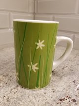 Starbucks green wheat/white flowers coffee mug in Bolingbrook, Illinois