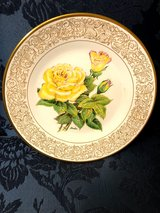 """Boehm Plate - """"The Peace Rose"""" in The Woodlands, Texas"""