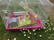 hamster cage in Lakenheath, UK