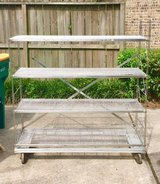Stainless Steel Shelves (food grade) with Wheels in Conroe, Texas