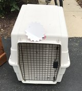 Dog Crate in Naperville, Illinois