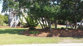 Lawns, Landscaping, & Pressure Washing in Camp Lejeune, North Carolina