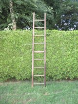 8 ft authentic orchard ladder in Ramstein, Germany