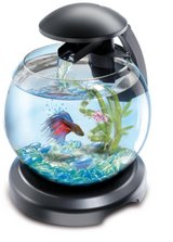 tetra fish bowl with waterfall and led lighting in Lakenheath, UK