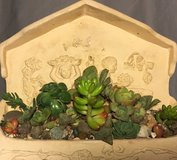 Wall shelf planter in Vacaville, California