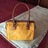 Purse/bag. Gently used in Chicago, Illinois
