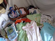 Oodles of Baby Onesies in Orland Park, Illinois