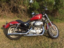 Harley 883L Very low mileage! in Beaufort, South Carolina