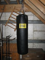 Punching Bag in New Lenox, Illinois