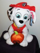 Marshall from paw patrol in Bolling AFB, DC