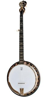 DEERING SIERRA Banjo in Kingwood, Texas