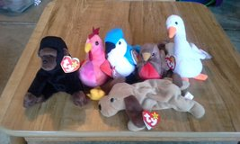 Ty Beanie Babies in Chicago, Illinois