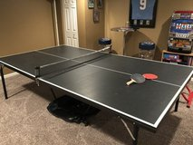 Ping Pong Table in Batavia, Illinois
