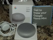 Google Home Mini in Fort Campbell, Kentucky