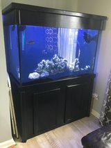 150 gallon tank, canopy, stand and more in Camp Lejeune, North Carolina