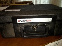 Sentry safe in Cleveland, Texas