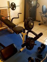 Apex Weight bench with weights in Ramstein, Germany