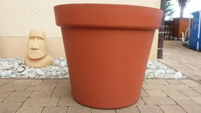 Large planter / pot for palm trees, olive trees-great condition in Spangdahlem, Germany