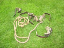 horse items; harness in Ramstein, Germany