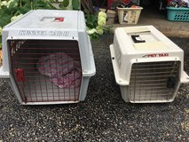 Pet carriers in Shorewood, Illinois