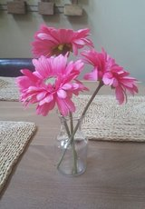 ADORABLE GLASS VASE WITH PINK FLOWERS in St. Charles, Illinois