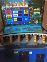 Alligator coin operated game in Fort Knox, Kentucky