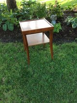 Contemporary End Table / Plant Stand in Chicago, Illinois