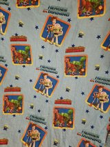 Toy Story 2 panel curtains in Alamogordo, New Mexico