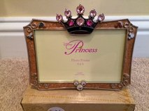 Disney Princess frame in Wilmington, North Carolina