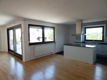 Beautiful view by the park (3BR,2BR)- walk to downtown Wiesbaden in Wiesbaden, GE