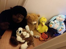 XL Stuffed Animals in Fort Bliss, Texas